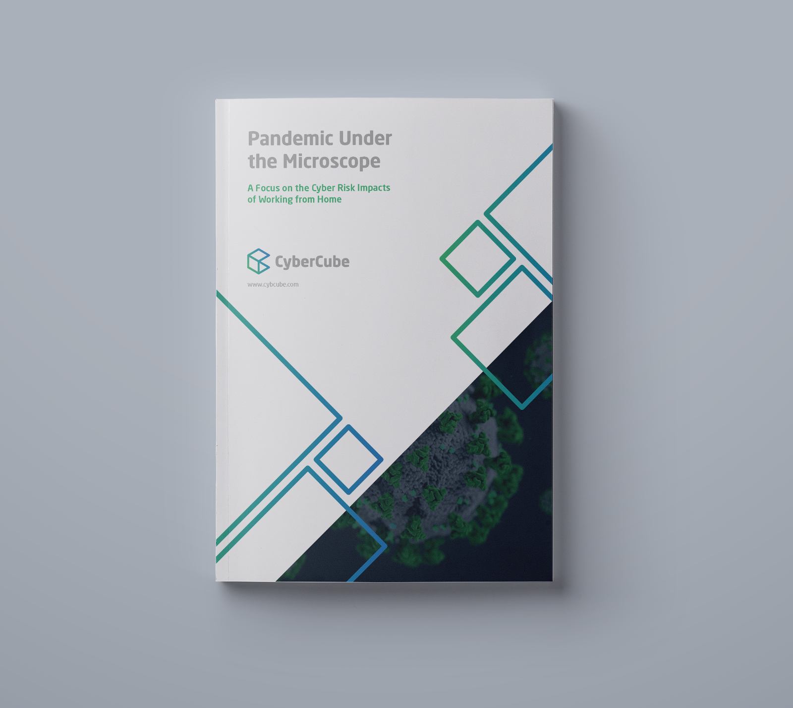Pandemic-Under-the-Microscope-cover-landing-pages